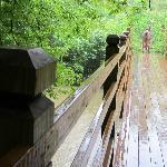 Smaller Bridge
