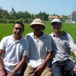 Cheap Bali Driver - Day Tours