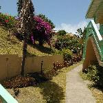 Bird Rock Hotel walkway