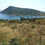 Rabbit Island Foto