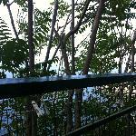 Meerblick von Balkon mit Meerblick