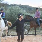 riding in the arena