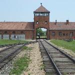 Birkenau (Auswitch trip)