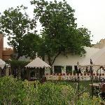 Garden Canopy Seating