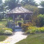 The gazebo to sit and relax in!