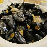 Mussels and Amandes with cream sauce, very HUGE!