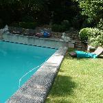 Une vue du jardin et de la piscine