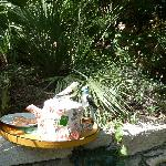 La tasse de thé vert, dans sa belle théière servie au bord de la piscine