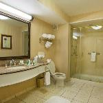 Typical Suite Bathroom