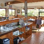 Küche, sauber und funktionell eingerichtet