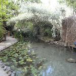 Akkaya Gardens