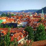 The city from the vineyards below Prague castle.
