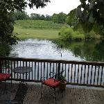 the deck right off the tasting room with views of the vines, fountain, and turtles