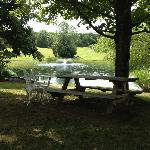 one of the many picnic areas on the property