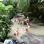 a group in the hot sulphur pools at Trafalgar Falls