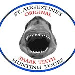 The ONLY Shark Teeth Tour in St. Augustine