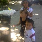 Malagan Beach Hotel - family friendly