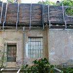 Black Forest Hostel from kitchen at back #3