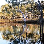 100 Mile Swamp - Undara NP Qld Au