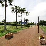 Ryuyo Marine Park