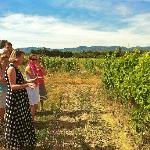 Auberge du Vin wine course