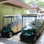 Golf carts for free use