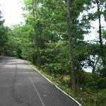 Scranton Lake walk path