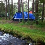 Our tent at Rothiemurchus campsite