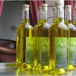 olive oil produced directly from the Locanda
