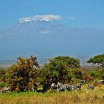 Kilimanjaro views from the room