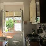 The lovely kitchen with a nice view of a lemon tree outside