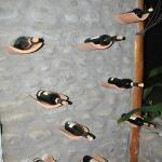 pared de vinos