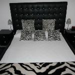"The ""zebra suite"""