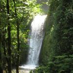 Waterfalls on Columbia River Gorge tour