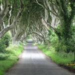 The Dark Hedges, Grace hill, Northern Ireland