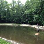 Natural stream fed pool.