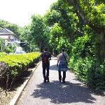 le parc ueno qui borde le chemin du metro jusqu'a l'hotel !