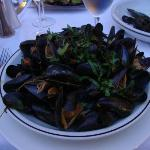 The most fresh mussels ever
