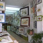 Galerie Sophen