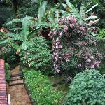 Jardim Interno da Pousada