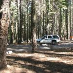 Rangers always checking campgrounds