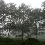 camino al volcán Turrialba