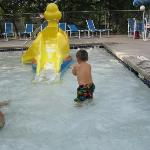 Duck slide in the kiddie pool