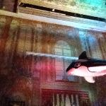 blow up whale above the DJ, for beach party theme :)