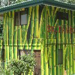 Big Bamboo Uvita Foto