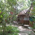 my cobana-home sweet home :)
