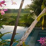 sunset by the pool at maya siargao villa