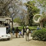 The mammoth, an iconic landmark of Barcelona - El mamut, una attración iconica