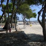 Beach in Alcudia