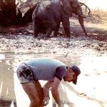 Sharing Water 1986